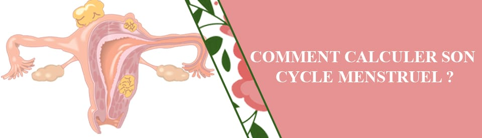 Comment Calculer Son Cycle Menstruel Techniques De Calcul